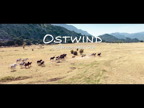 Ostwind 3. A menedék 3.  TELJES FILM hamarosan. Részlet a fordításomból! letöltés