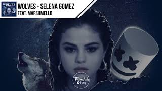 แปลเพลง Wolves - Selena Gomez ft. Marshmello