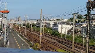 【小田急】5000形甲種輸送 5054×10  20200820【ASHIGARA】