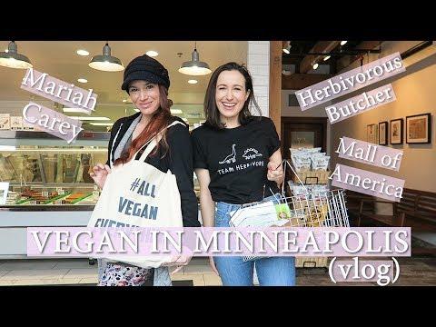 Visiting a VEGAN BUTCHER ( Minneapolis Travel Vlog)