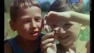 Жизнь в СССР после войны. В цвете.