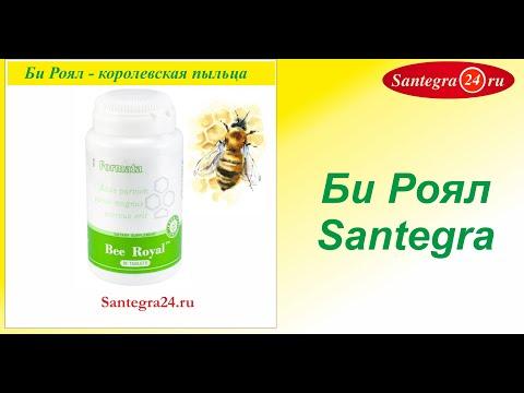Интернет магазин меда. Продукты пчеловодства с Алтайской