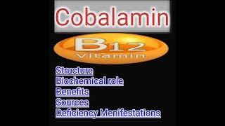 Vitamin B12 | Cobalamin Lecture