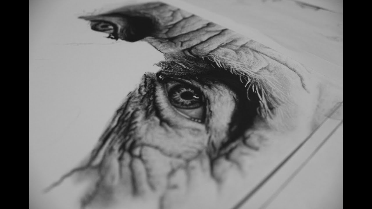 108 graphite pencil drawing youtube
