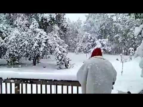 Earliest snow in South Carolina. 11/1/14. Gilbert, SC. Waking up to a Winter Wonderland.