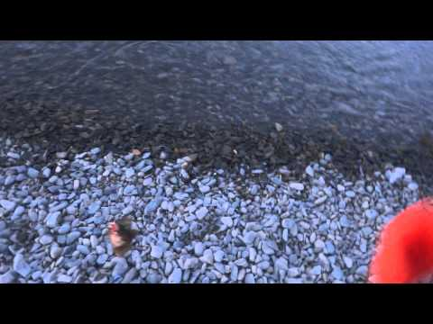 морская рыбалка в сукко