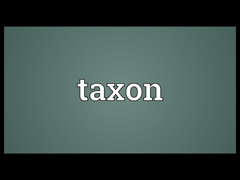 Taxon Meaning