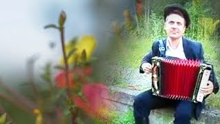 Гармошка ☀️ Гарна пісня під гармонь про життя, кохання і розлуки ╰❥ Ukrainian folk song╰❥ Грай гармонь