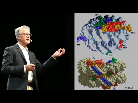 Peter Dervan: Transcription Factor Antagonists: From Discovery to Oncology