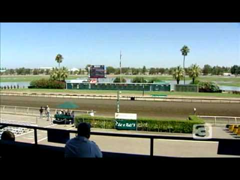 Cal Expo Hosts 600 Racehorses