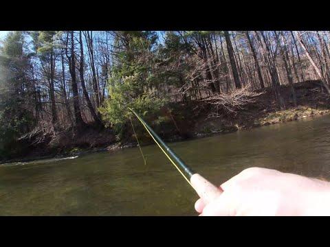 Wild Brown Trout Series - Kinderhook Creek Part 1 (Intro/Giveaway Reminder)
