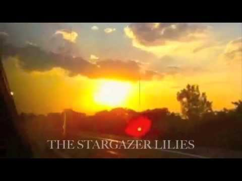 The Stargazer Lilies 'We are the Dreamers' album trailer
