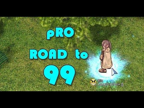 pRO road to 99 leveling guide
