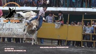 ¡TORO CAMPEON  Y FINALISTAS! TORNEO INTERESTATAL DE TOROS DE REPARO 2015 SAN PEDRO  DE LOS NARANJOS