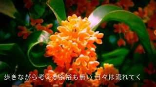 【キンモクセイ】 作詞/作曲 Dai Dada 編曲 MANS 画像編集 hikomaru 秋...
