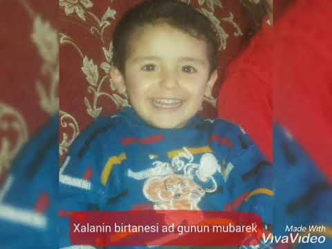 Sadiq Hemzeyev - Can Kasibim Gül Balasi 2021 (Official Music Video)