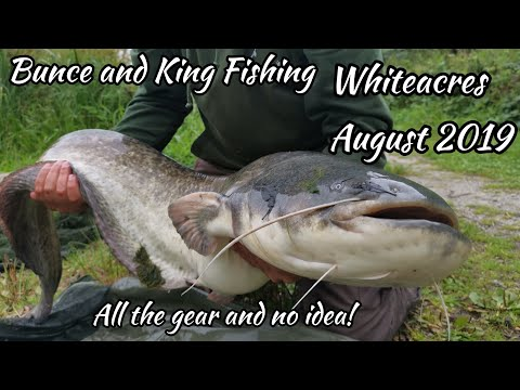 Carp And Catfish Fishing At Whiteacres August 2019