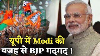 जानिए Modi की वजह UP में BJP महागठबंधन पर कैसे पड़ने लगी भारी