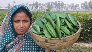 Bean Seeds And Catfish Recipe Village Vegetable Cooking Farm Fresh Bean Curry Healthy Village Food