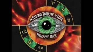 The String Tribute to Tool - Schism