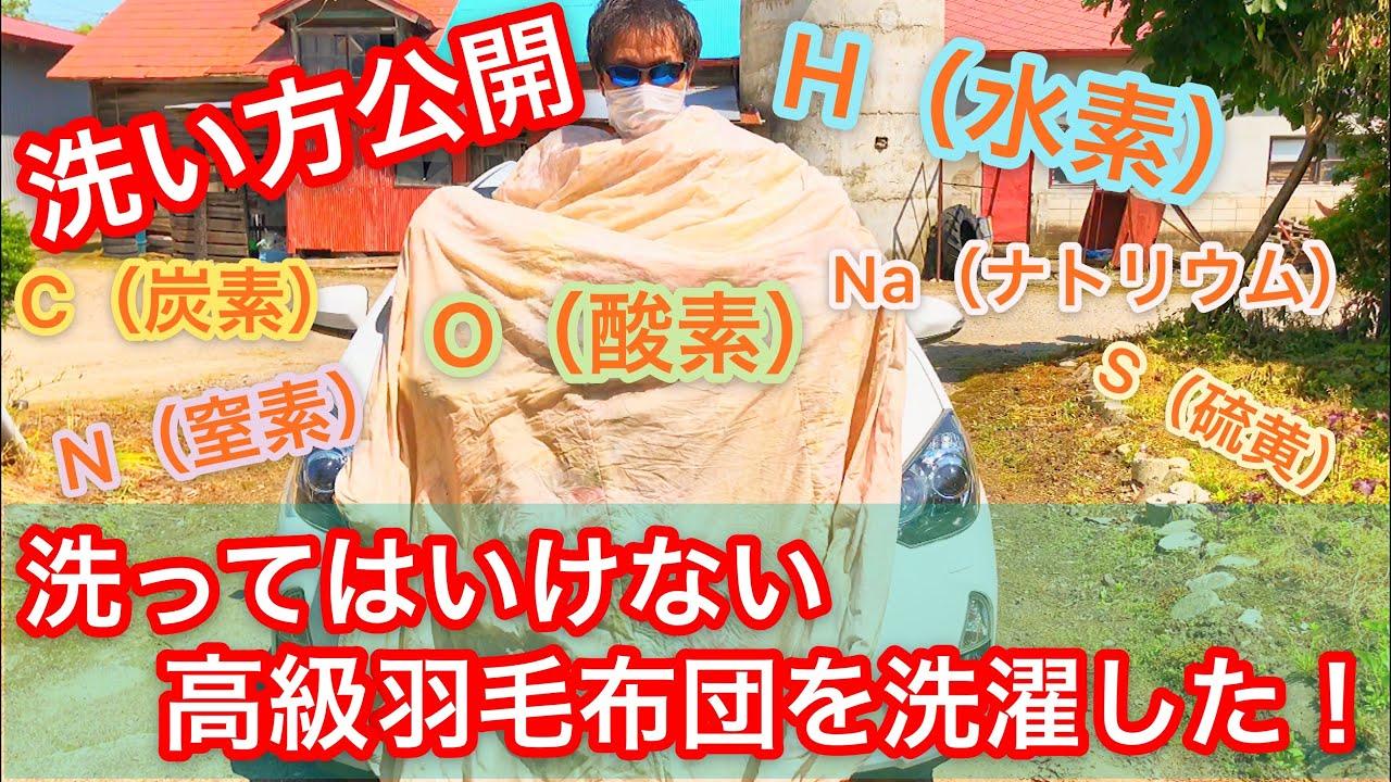 【必見】洗ってはいけない高級羽毛布団を洗濯した!