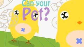 SUPER KAWAII GAME - Can Your Pet?