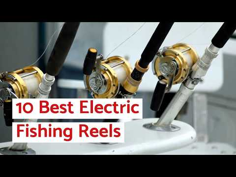 10 Best Electric Fishing Reels (For The Money) » 2020 Review