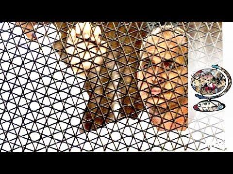 Peter Greste's Egyptian Prison Ordeal