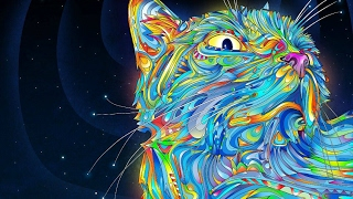 Trippy videos when you're high Song List