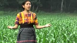 vanidad de la vida Fabiola Ramirez
