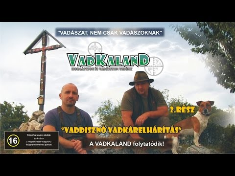 VADKALAND (2.rész) - Vaddisznó vadkárelhárítás (English-language version of in the description)