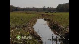 Paddy cultivation in Kerala : കേരളത്തിലെ നെല്കൃഷി
