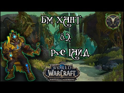 Бм хант PvE гайд 8.2.5 World of Warcraft BfA