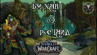 Бм хант PvE гайд 8.2.5 World of Warcraft BfA