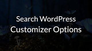 Customizer Search WordPress Plugin Mp3