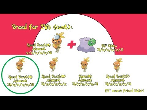 Pokemon Omega Ruby Alpha Sapphire: Breeding Perfect Pok ...