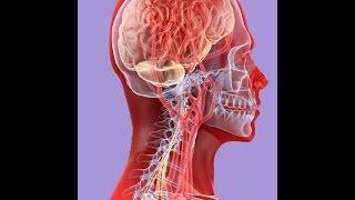 Артериальная гипертензия -- симптом заболеваний позвоночника?