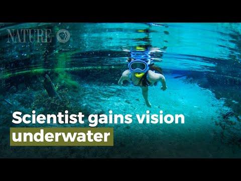 Nhà Khoa Học Lấy Lại Thị Lực Ở Dưới Nước