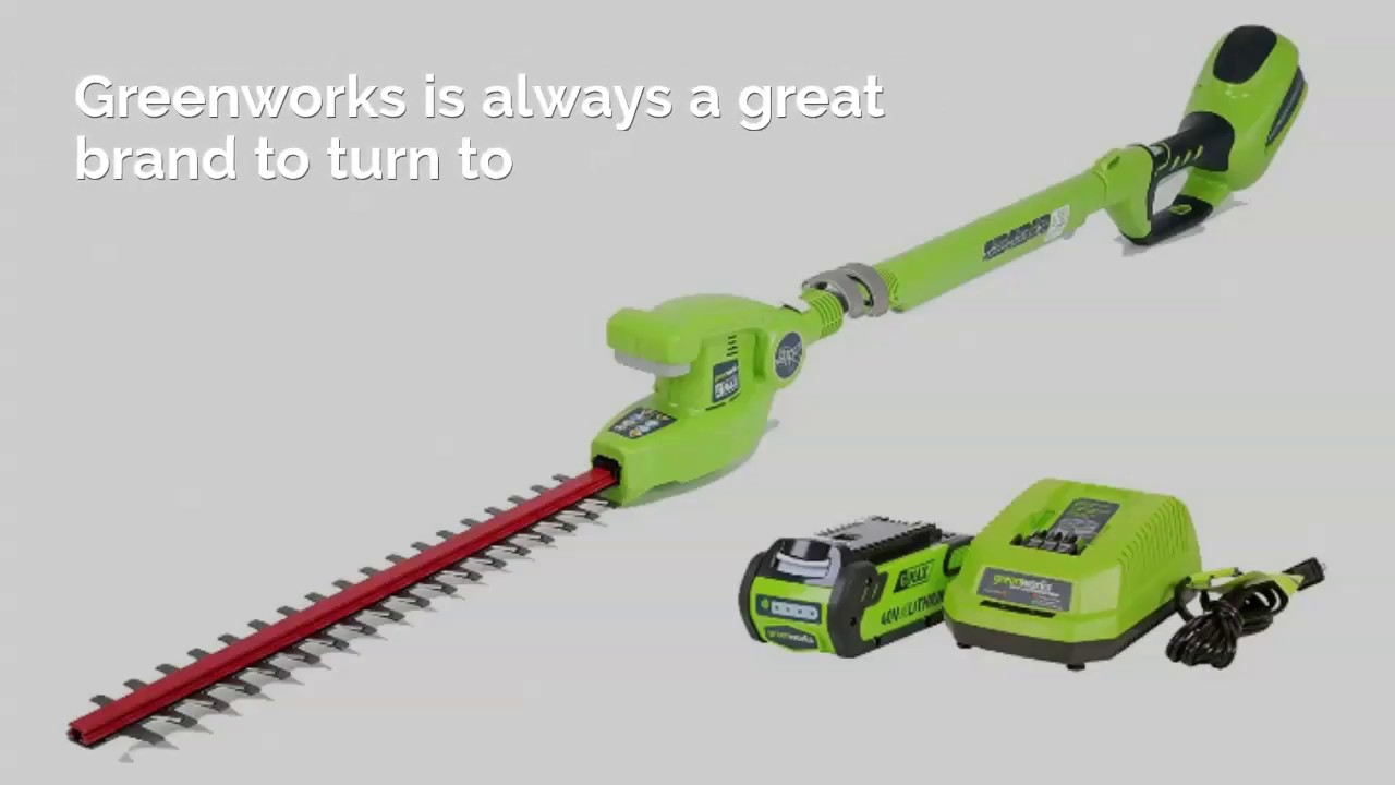 7 Best Pole Hedge Trimmers – Reviews & Buying Guide