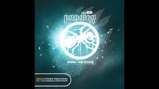 The Prodigy - Girls (Little Orange UA Tribute Remix) [FREE DOWNLOAD]