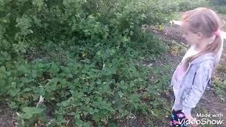 """Коротко-метражный ФИЛЬМ """"КЛАД"""""""