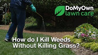 How Do I Kill My Weeds Without Killing My Grass? - Weed Control Tips