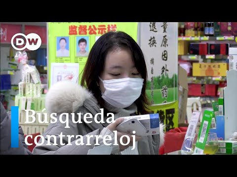 Coronavirus: científicos buscan una vacuna