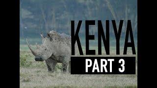 8 Days Safari Tour in Kenya, Africa - Part 3 (Lake Nakuru)