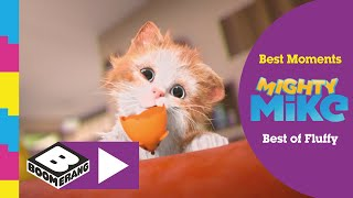 Mighty Mike | Best Moments of Fluffy | Boomerang