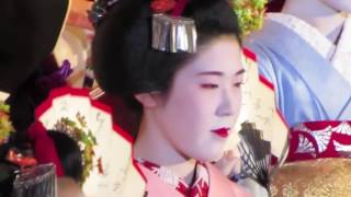 Japanese Maple Dance