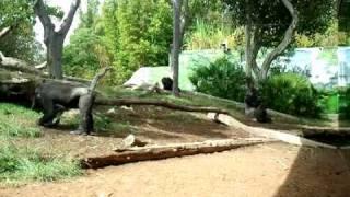 Video-2010-09-06-14-54-03