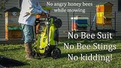 Mow Your Bee Yard Without getting stung NO ANGRY HONEY BEES no bee suit