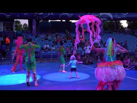 Club Sea Glow Overview Electric Ocean at Sea World Orlando