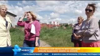 многодетным семьям выделили землю на болоте в Челябинске